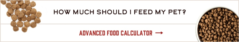 Advanced Food Calculator