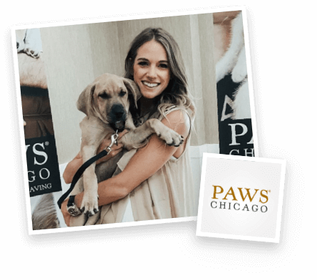 Paws Chicago