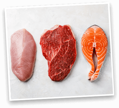 chicken, beef, salmon ingredients