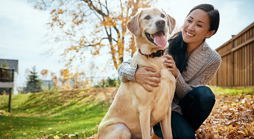 10 Ways To Show Love To Your Dog