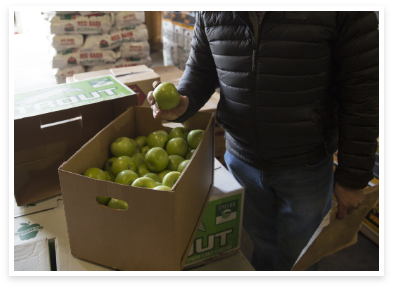 real, whole apples at Merrick to be added to dog food recipes