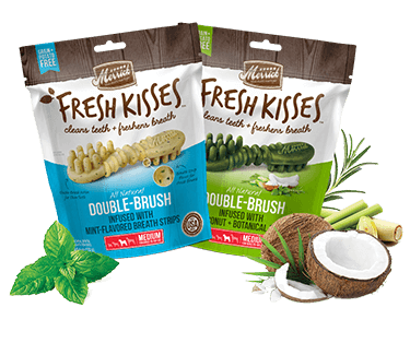Image of Fresh Kisses treat bags, coconut oil, and mint leaves