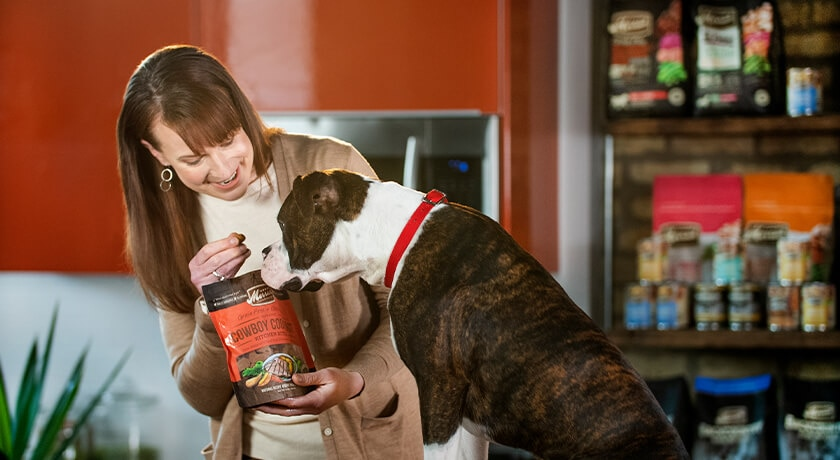 The Easiest Way to Train Your Dog? With Food Rewards