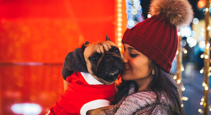 Best Holiday Gifts For The Pet Lover In Your Life