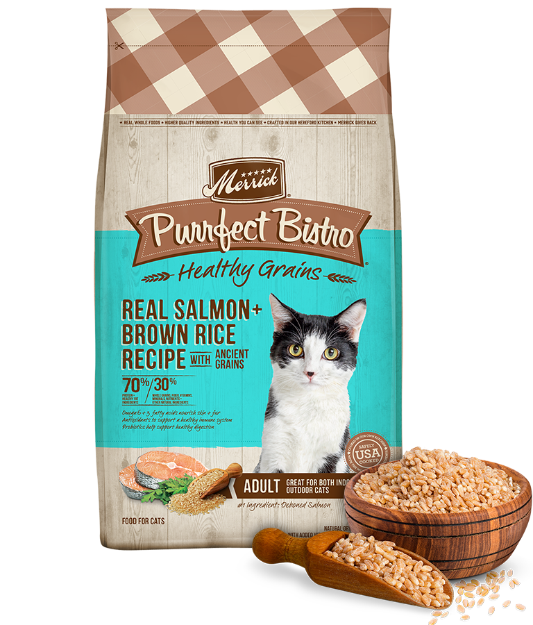 Purrfect Bistro Healthy Grains Real Salmon and Brown Rice Recipe